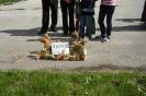 Powiatowo-Gminne Dożynki Królikowo 2008_26