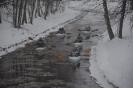 Zimowy spływ 2013_1